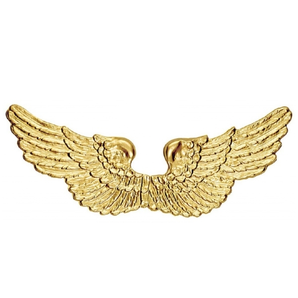 Andělská křídla, plastová,zlatá