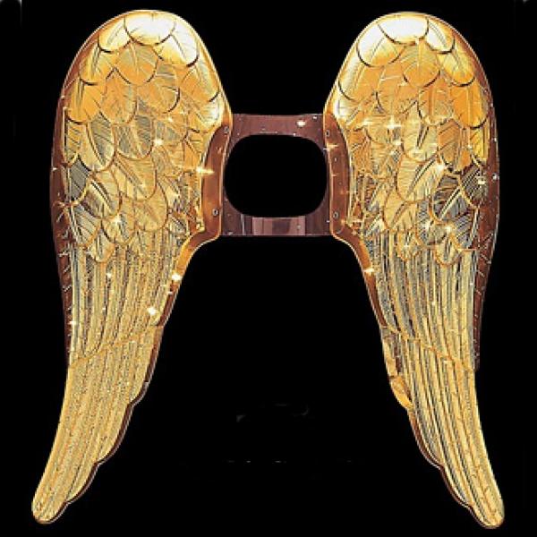 Andělská křídla, zlatá, velká